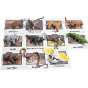 Curious Minds Busy Bags Montessori Australian Animal Match Cards and Figurines. Nomenclature Science Work Continent Box