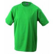 James & Nicholson T Camiseta para hombre, tamaño XXL, color verde