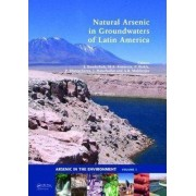 Natural Arsenic in Groundwaters of Latin America by Jochen Bundschuh