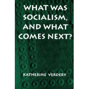 What Was Socialism, and What Comes Next? by Katherine Verdery