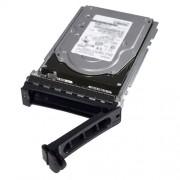 DELL/HDD/1TB/NLSAS/6GBPS/7.2K/3.5/HOTPLUG