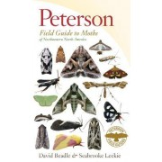 Peterson Field Guide to Moths of Northeastern North America by David Beadle