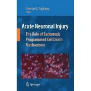 Acute Neuronal Injury by Denson G. Fujikawa