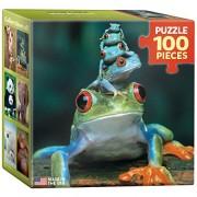 Eurographics Red eyed tree frog Mini Puzzle (100 Pezzi)