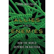 Allies and Enemies by Anne E. Maczulak