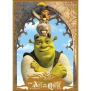 Shrek by Dreamworks Animation