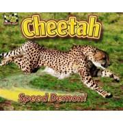 Cheetah by Natalie Lunis