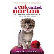 Cat Called Norton, AThe True Story of an Extraordinary Cat by Peter Gethers