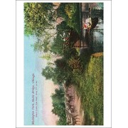 Chicago, Illinois South Side Parks; Washington Park View Of Rustic Bridge (Playing Card Deck 52 Card Poker Size With Jokers)