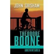 Theodore Boone - Amenintarea