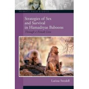 Strategies of Sex and Survival in Female Hamadryas Baboons by Larissa Swedell