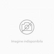 Raspunderea civila contractuala in noul Cod civil
