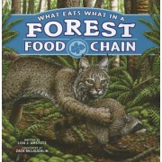 What Eats What in a Forest Food Chain by Lisa J Amstutz
