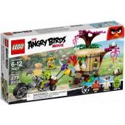 Angry Birds - Bird Island Eierenroof 75823