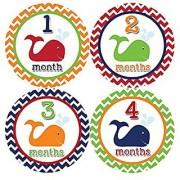 Months in Motion 399 Monthly Baby Stickers Baby Boy Milestone Age Sticker Photo