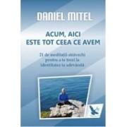 Acum aici este tot ceea ce avem - Daniel Mitel