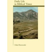 Daily Life in Biblical Times by Oded Borowski