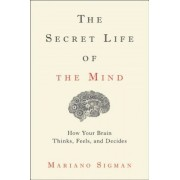 The Secret Life of the Mind: How Your Brain Thinks, Feels, and Decides, Hardcover