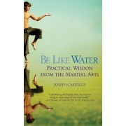 Be Like Water: Practical Wisdom from the Martial Arts, Paperback