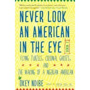 Never Look an American in the Eye: A Memoir of Flying Turtles, Colonial Ghosts, and the Making of a Nigerian American