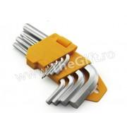Set de 9 chei imbus 1.5 - 10 mm