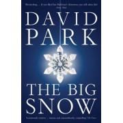 The Big Snow by David Park