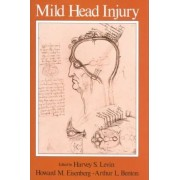 Mild Head Injury by Professor in the Departments of Physical Medicine and Rehabilitation Psychiatry Neurosurgery and Pediatrics Harvey S Levin