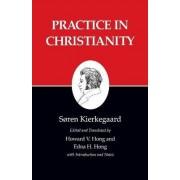 Kierkegaard's Writings: Practice in Christianity v. 20 by S