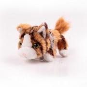 Pisici de plus Nr. 7 - Maine Coon Miffy