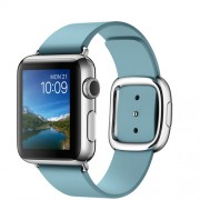 APPLE 38MM STAINLESS STEEL CASE WITH BLUE JAY MODERN BUCKLE - LARGE