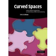 Curved Spaces by P. M. H. Wilson