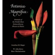 Botanica Magnifica: Portraits of the World's Most Extraordinary Flowers and Plants by Jonathan Singer