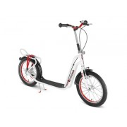 PUKY Trotinette Roller 2002L argent Sport & Loisirs