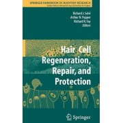 Hair Cell Regeneration, Repair, and Protection by Richard J. Salvi