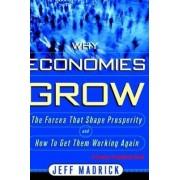 Why Economies Grow by Jeff Madrick