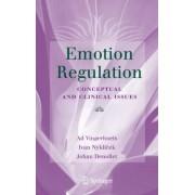 Emotion Regulation by Johan Denollet