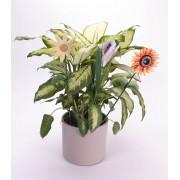 Tija suport plante in forma de floare - 3 buc