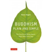 Buddhism Plain and Simple: The Practice of Being Aware, Right Now, Every Day