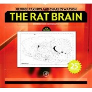 The Rat Brain in Stereotaxic Coordinates by George Paxinos