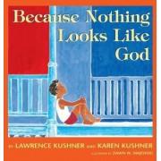 Because Nothing Looks Like God by Rabbi Lawrence Kushner