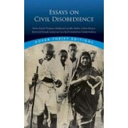 Essays on Civil Disobedience by Bob Blaisdell
