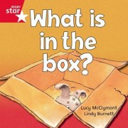 Rigby Rocket: Red Reader 2 - What Is In The Box?