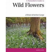 Naturalist's Guide to the Wild Flowers of Britain & Europe by Andrew Cleave