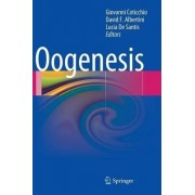 Oogenesis by Giovanni Coticchio
