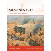 Messines 1917 by Alexander Turner