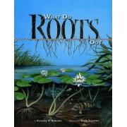 What Do Roots Do? by Kathleen V. Kudlinski