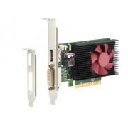 HP NVIDIA GeForce GT 730 2GB PCIe x8 GFX
