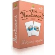 Montessori - Asocieri Notiuni opuse