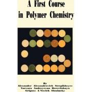 A First Course in Polymer Chemistry by Alexander A Stepikheyev
