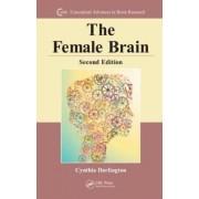 The Female Brain by Cynthia L. Darlington